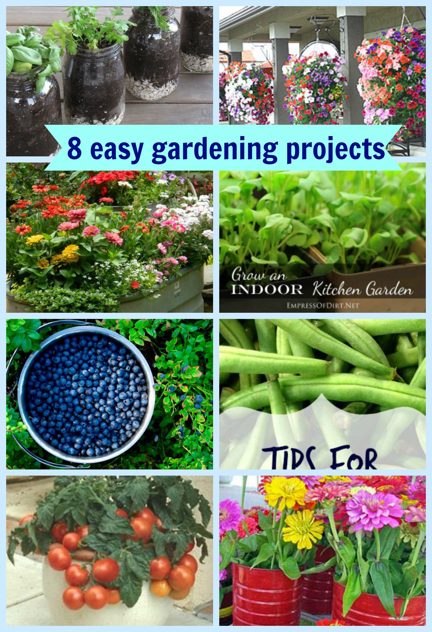 8 easy gardening projects the suburban chronicles - Easy gardening ...